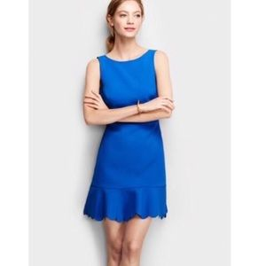 J. Crew scalloped ruffle hem sheath dress